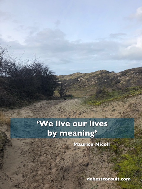 we live our lives by meaning